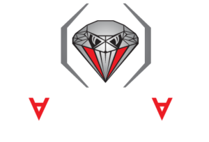 Diamondback Fighting Championship Logo